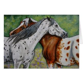 Verkratzen Sie meine Rückseite, Appaloosa-Pferde Karte