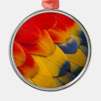 Versieht Scharlachrot Macaw-Nahaufnahme mit Federn Silbernes Ornament