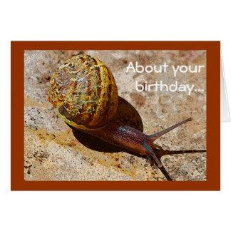 Happy Birthday, liebe Ute! Verspateter_geburtstag_des_snail_mail_grusskarte-r67dcdf64dbd7411fa4c5cce8111d0da4_xvuak_8byvr_324
