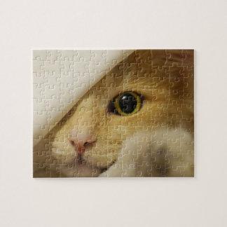 Verstecken-Kätzchen unter Decke Puzzle