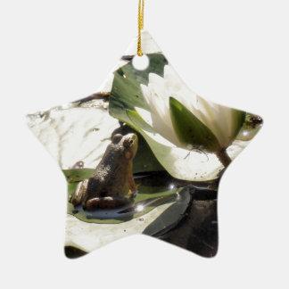 Verzauberter Frosch Keramik Ornament