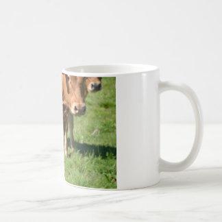 Vieh in den Inseln von Scilly Tasse