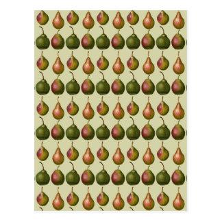 Vielzahl der Birnen Postkarte