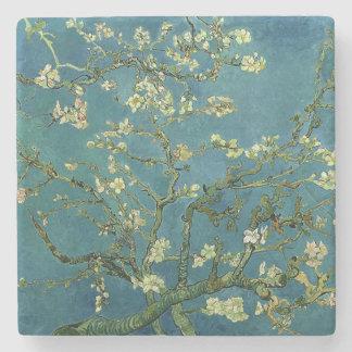 Vincent van Goghs Mandel-Blüte Steinuntersetzer