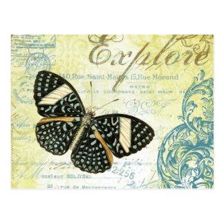 Vintag erforschen Sie Butterly… Postkarte