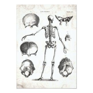 Vintage 1800s Skeleton antike Anatomie-Skelette 12,7 X 17,8 Cm Einladungskarte