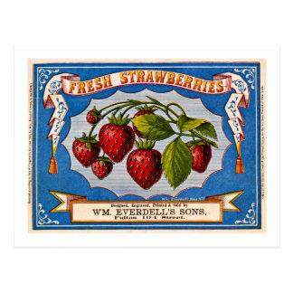 Vintage Anzeige für frische Erdbeeren circa 1868 Postkarte