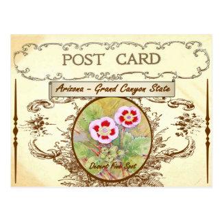 Vintage Arizona-Staats-Blumen-Postkarte Postkarten