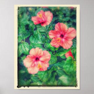 Vintage Art-tropische Hibiskus-Blumen Poster