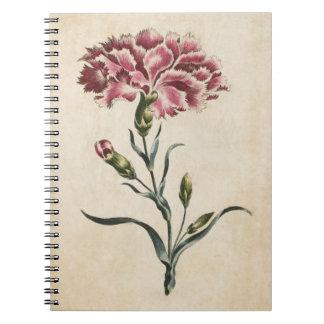 Vintage botanische Blumengartennelken-Illustration Notizblock