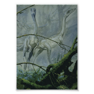 Vintage Dinosaurier, Megapnosaurus alias Syntarsus Poster