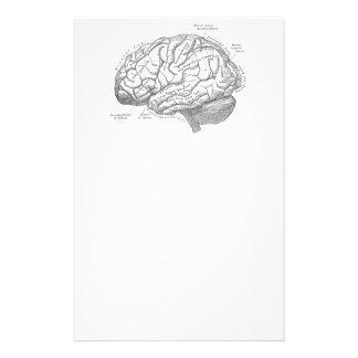 Vintage Gehirn-Anatomie Individuelle Druckpapiere