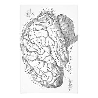Vintage Gehirn-Anatomie Personalisierte Büropapiere