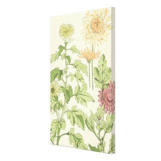 Vintage Kunst Nouveau, Chrysanthemen in einem Leinwanddruck