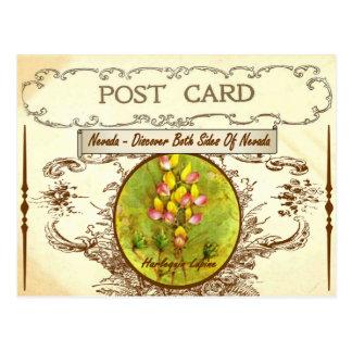 Vintage Nevada-Staats-Blumen-Postkarte Postkarte