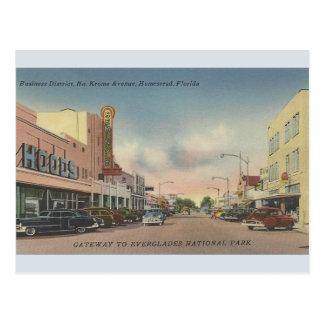 Vintage NordKrome Alleen-Gehöft Florida-Postkarte Postkarte