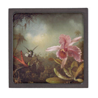 Vintage Orchidee mit Kolibri-Andenken-Kasten Kiste