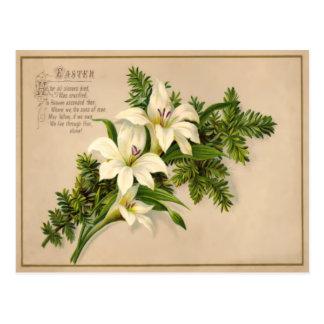 Vintage Osterlilien-Postkarte Postkarte