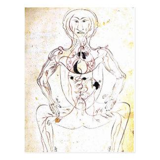 Vintage persische medizinische vordere Anatomie Postkarte