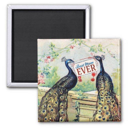 Vintage Pfaus - beste Mamma überhaupt Magnets
