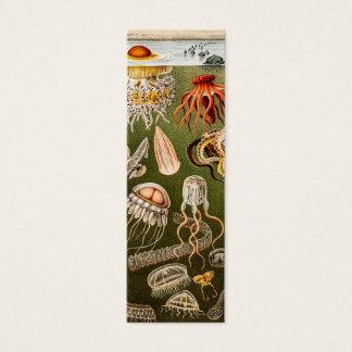 Vintage Quallen-Antiken-Qualle-Illustration Mini Visitenkarte