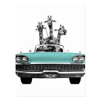 Vintage Retro Gesang-Giraffen Auto-Straße Trip_ Postkarte