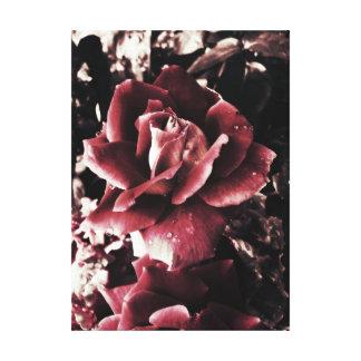 Vintage Rote Rosen Leinwanddruck