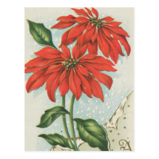 Vintage rote Weihnachtspoinsettias Postkarte