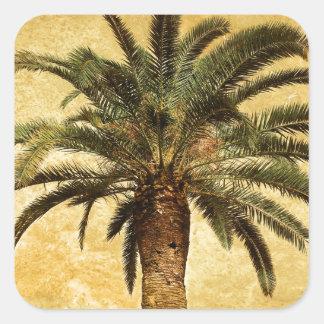 Vintage tropische Palme Quadratischer Aufkleber