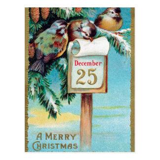 Vintage Weihnachtsfeiertags-Vogelpostkarte Postkarte