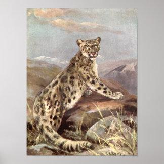 Vintage wilde Tiere, Schnee-Leopard durch CER Poster