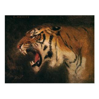 Vintager bengalischer brüllende Tiger-große Katze, Postkarte