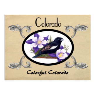 Vintager Blick-alte Postkarte Colorado