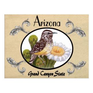 Vintager Blick-alter Postkarten-Arizona-Staat Postkarte