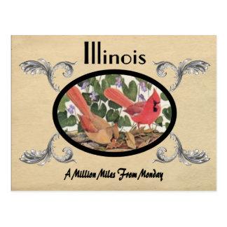 Vintager Blick-alter Postkarten-Illinois-Staat Postkarten