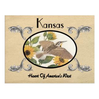 Vintager Blick-alter Postkarten-Kansas-Staat Postkarte
