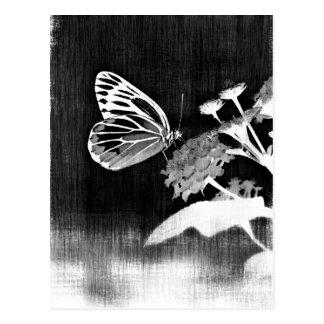 Vintager Schmetterling auf der Blume - Postkarte