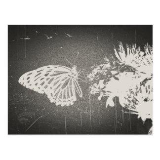 Vintager Schmetterling - Postkarten