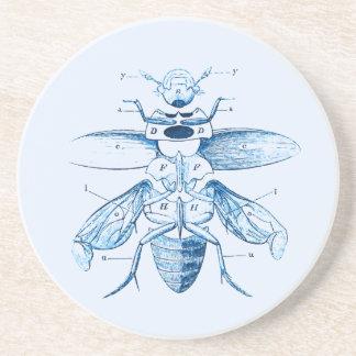 Vintages Blau des Insekten-| der Entomologie-| der Getränkeuntersetzer