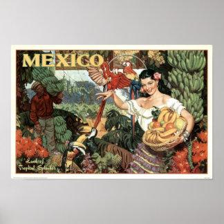 Vintages Mexiko-Land des tropischen Poster
