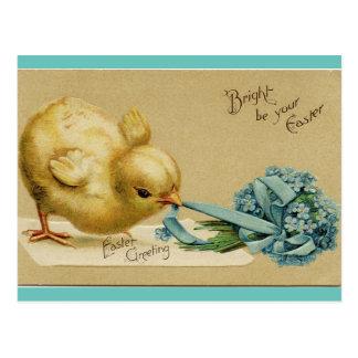 Vintages Ostern-Küken Postkarte