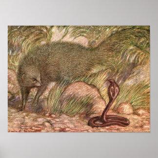 Vintages wildes Tier, Mungo und Kobra durch Poster