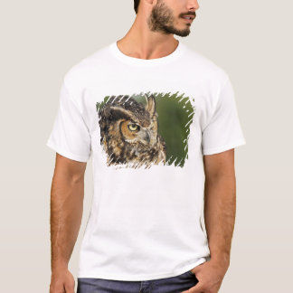 Virginia-Uhu, Bubo virginianus, Gefangener T-Shirt