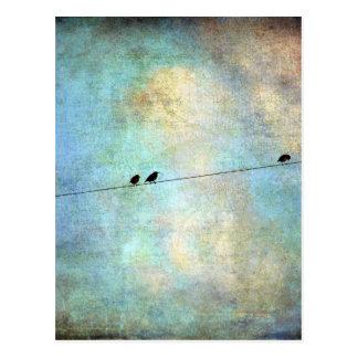 Vögel auf einer Draht-Digital-Kunst Postkarten