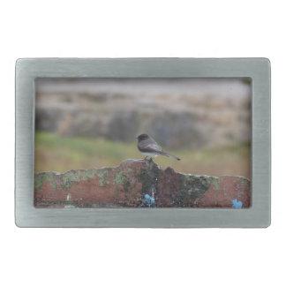 Vogel auf einer Wand Rechteckige Gürtelschnalle