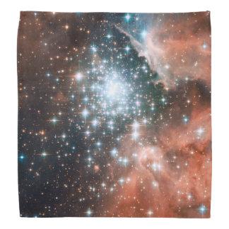 Volles Hubble ACS Bild von NGC 3603 Halstuch