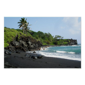 Vulkanischer schwarzer Sandstrand auf Poster