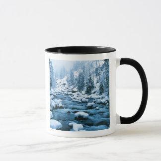 WA, Wenatchee staatlicher Wald, Kaskade Tasse