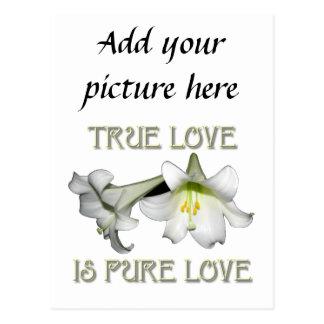 Wahre Liebe ist reine Liebe (weiße Osterlilien) Postkarte