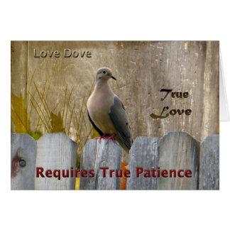 Wahre Liebe-Liebe-Taube Grußkarte